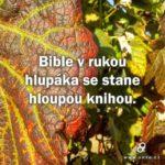 Bible v rukou hlupáka…